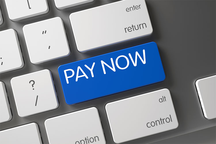 DataLink Pay Now